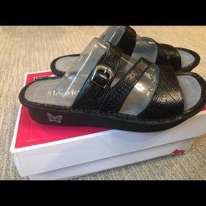 Alegria sandals. New never worn!!